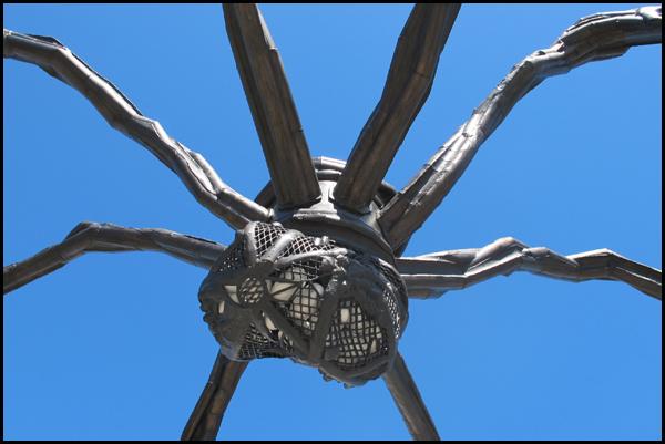 Ottawa Spider