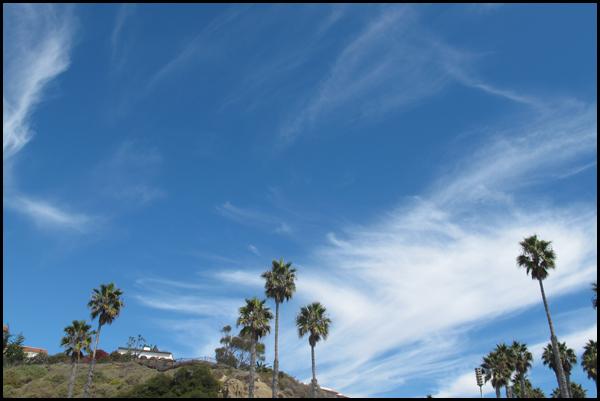 San Clemente Pier Palm Trees